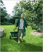 Lawn FAQ