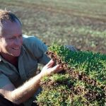 Autumn Lawn Care Tasks Before Easter