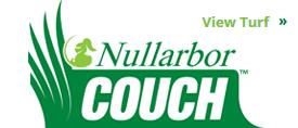 Nullarbor Couch