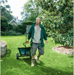 FAQs lawn care