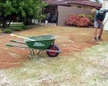 Top Dressing Lawns