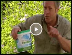 Lawn Care Advice