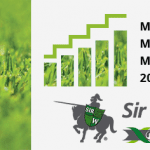 Sir Walter is the Best Value Lawn for Your Money