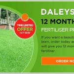 Sir Walter - Beautiful Green Lush Lawn