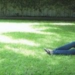 Turf for Shady Areas